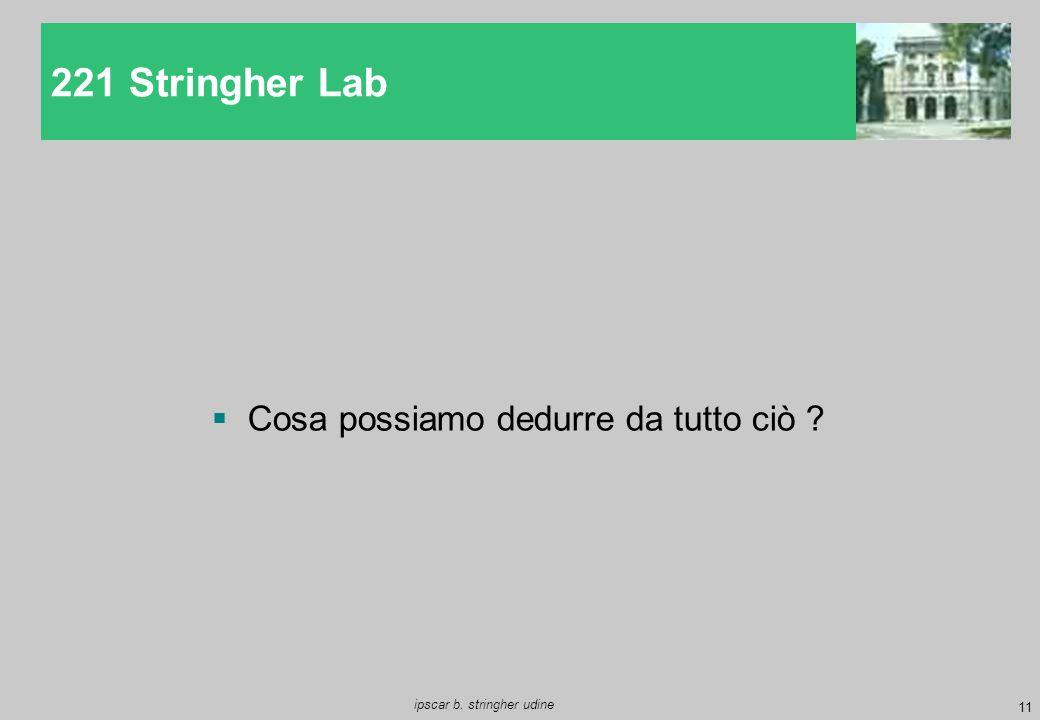 11 ipscar b. stringher udine  Cosa possiamo dedurre da tutto ciò ? 221 Stringher Lab