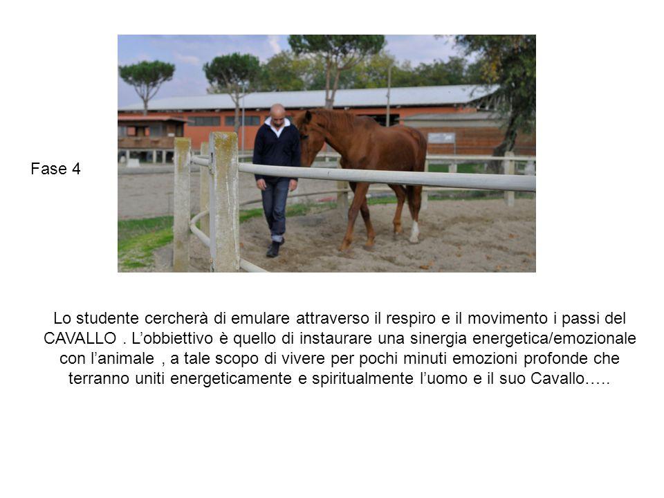 Lo studente cercherà di emulare attraverso il respiro e il movimento i passi del CAVALLO. L'obbiettivo è quello di instaurare una sinergia energetica/