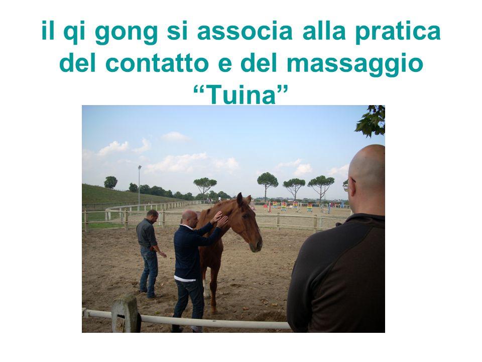 """il qi gong si associa alla pratica del contatto e del massaggio """"Tuina"""""""