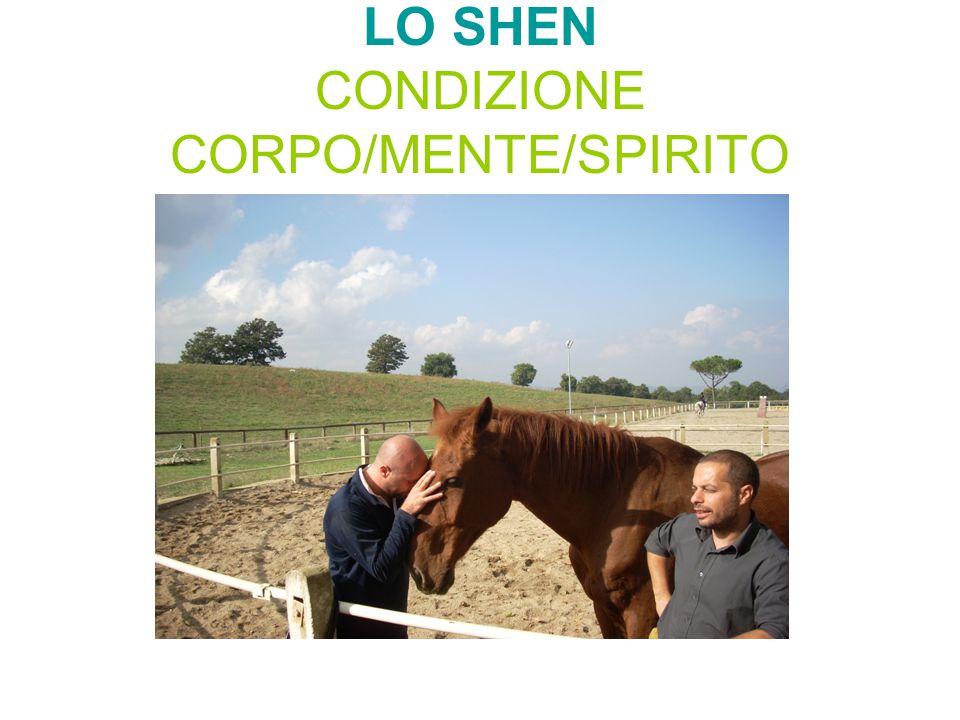 LO SHEN CONDIZIONE CORPO/MENTE/SPIRITO