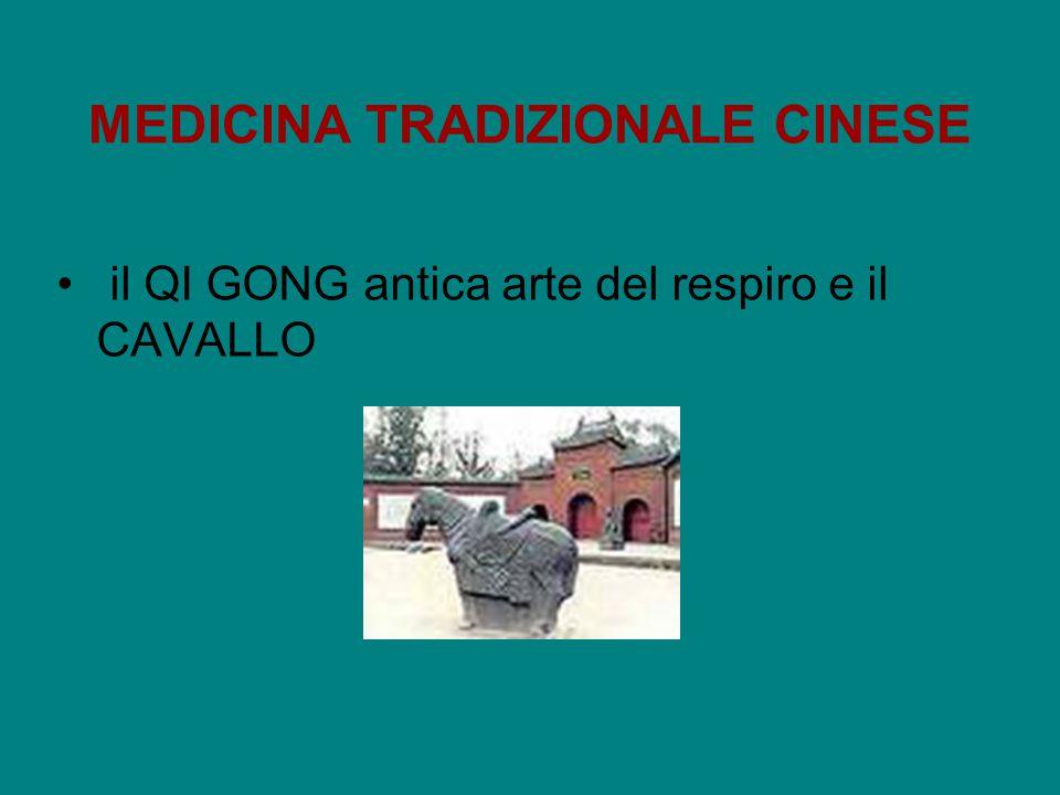 MEDICINA TRADIZIONALE CINESE il QI GONG antica arte del respiro e il CAVALLO