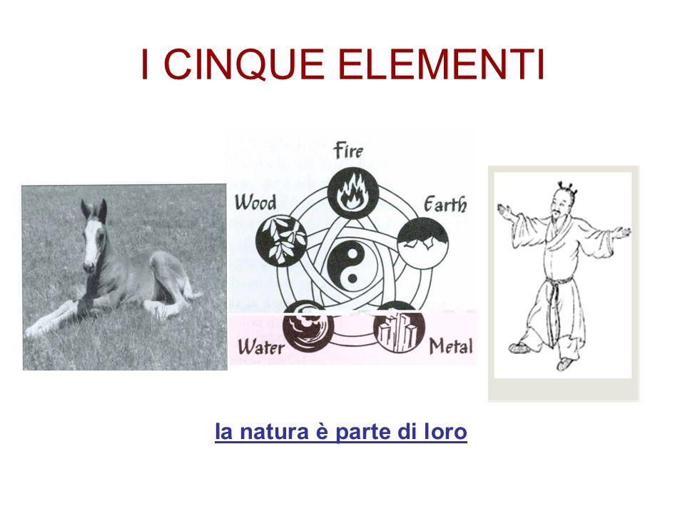 I CINQUE ELEMENTI Ia natura è parte di loro