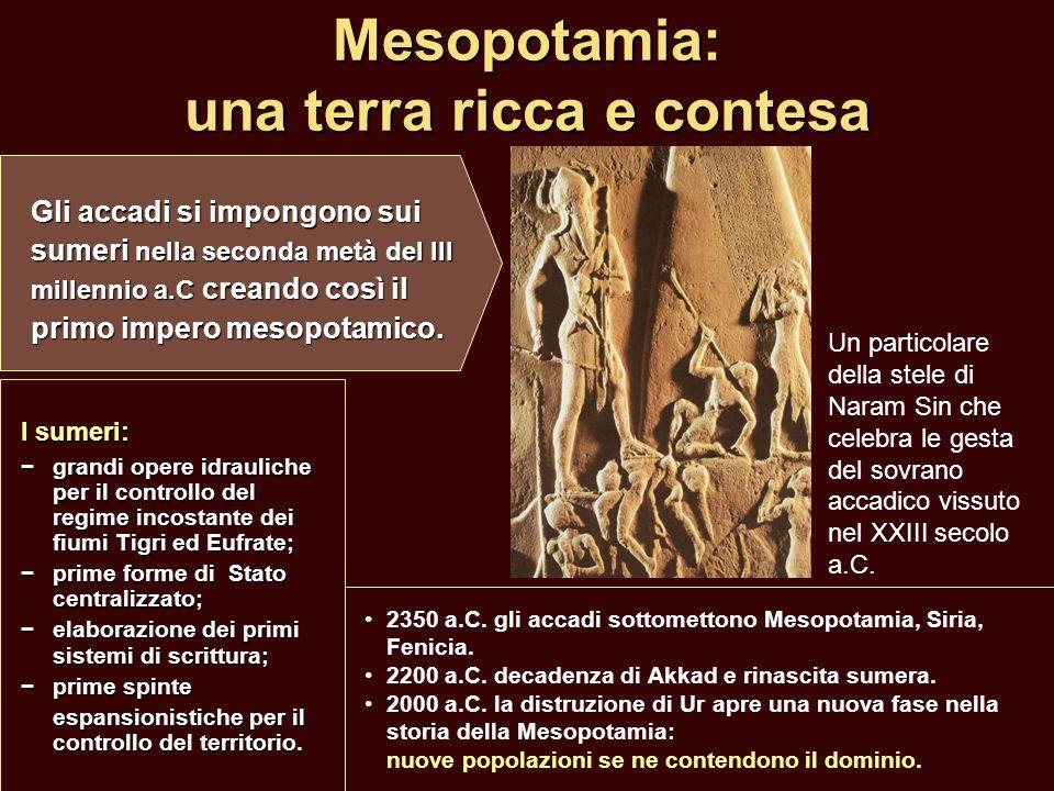 Mesopotamia: una terra ricca e contesa I sumeri: −grandi opere idrauliche per il controllo del regime incostante dei fiumi Tigri ed Eufrate; − prime f