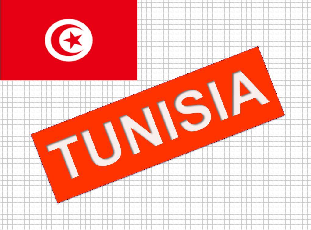 TUNISIA SNAPSHOT MENA REGION