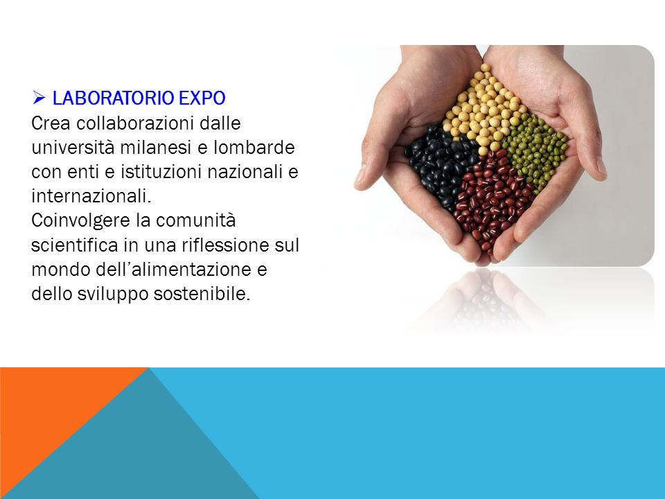  LABORATORIO EXPO Crea collaborazioni dalle università milanesi e lombarde con enti e istituzioni nazionali e internazionali. Coinvolgere la comunità