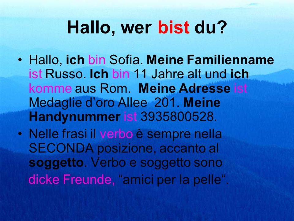 Hallo, wer bist du? Hallo, ich bin Sofia. Meine Familienname ist Russo. Ich bin 11 Jahre alt und ich komme aus Rom. Meine Adresse ist Medaglie d'oro A