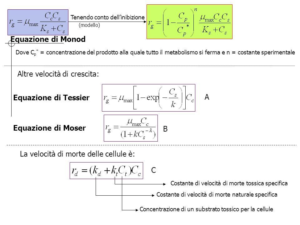 Tenendo conto dell'inibizione (modello) Dove C p * = concentrazione del prodotto alla quale tutto il metabolismo si ferma e n = costante sperimentale