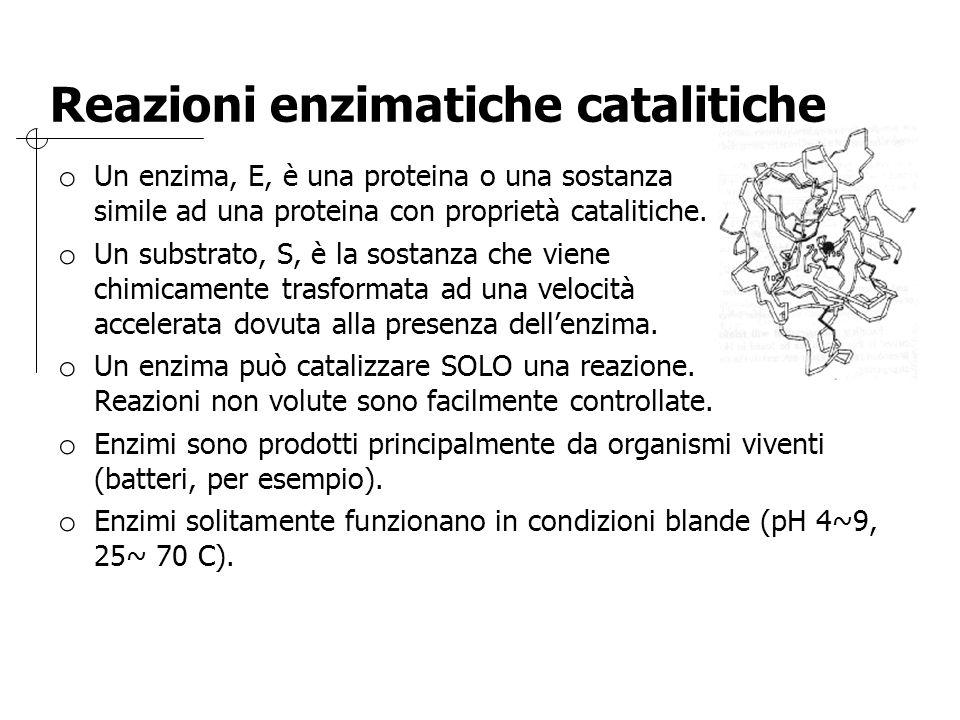Reazioni enzimatiche catalitiche o Un enzima, E, è una proteina o una sostanza simile ad una proteina con proprietà catalitiche. o Un substrato, S, è