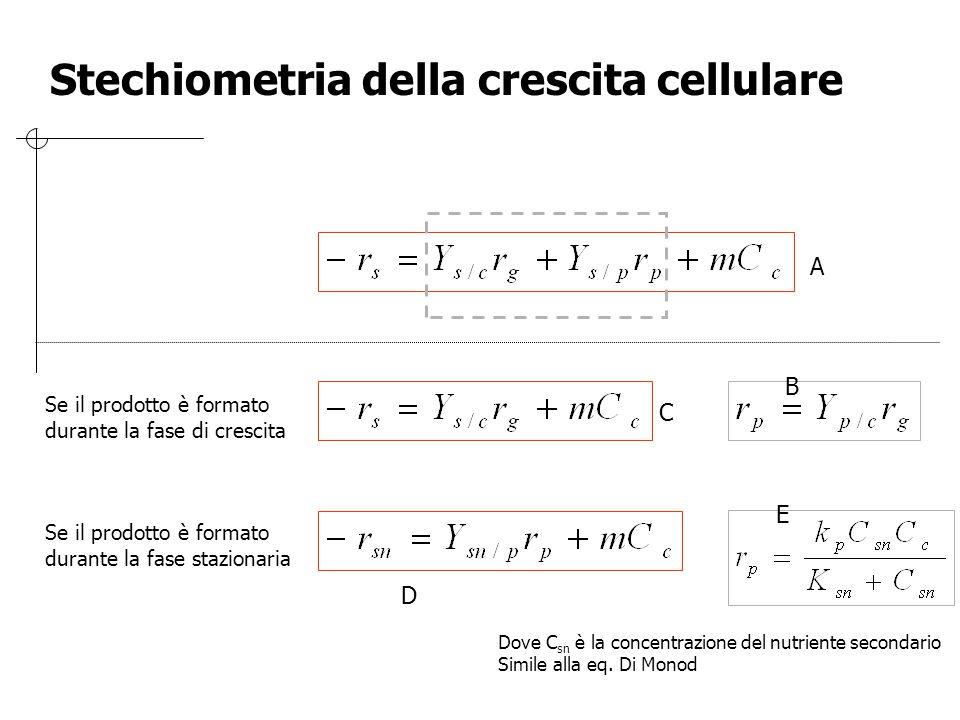 Se il prodotto è formato durante la fase di crescita Se il prodotto è formato durante la fase stazionaria Dove C sn è la concentrazione del nutriente