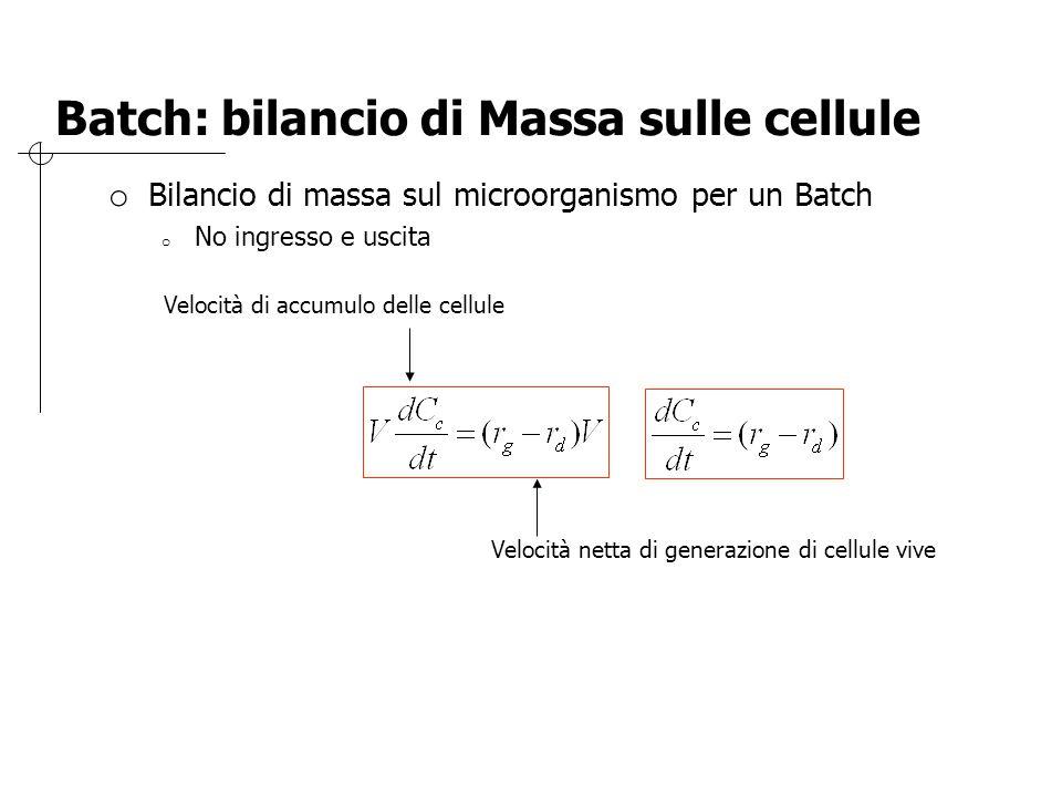Batch: bilancio di Massa sulle cellule o Bilancio di massa sul microorganismo per un Batch o No ingresso e uscita Velocità di accumulo delle cellule V