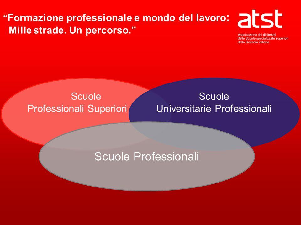 Scuole Professionali Superiori Scuole Universitarie Professionali Scuole Professionali Formazione professionale e mondo del lavoro : Mille strade.