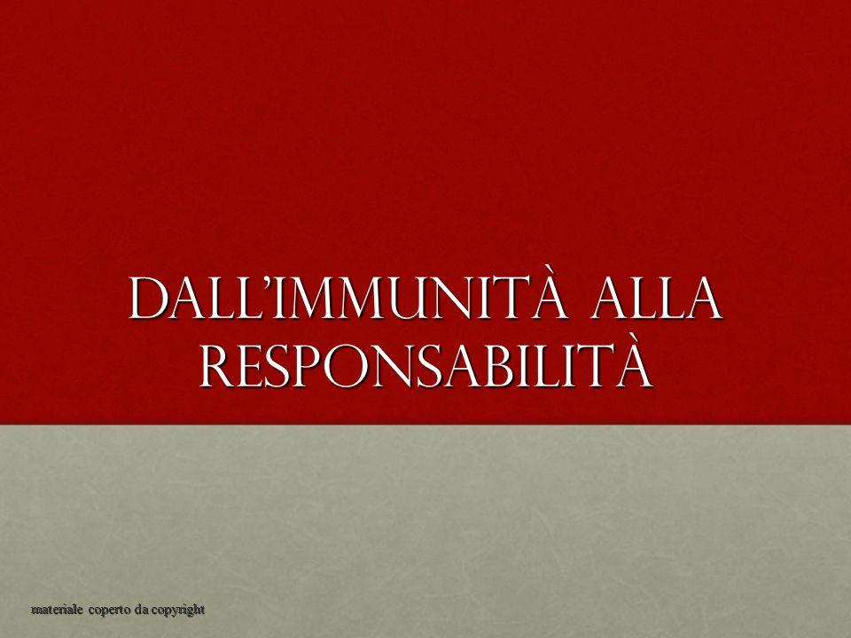 Dall'immunità alla responsabilità materiale coperto da copyright