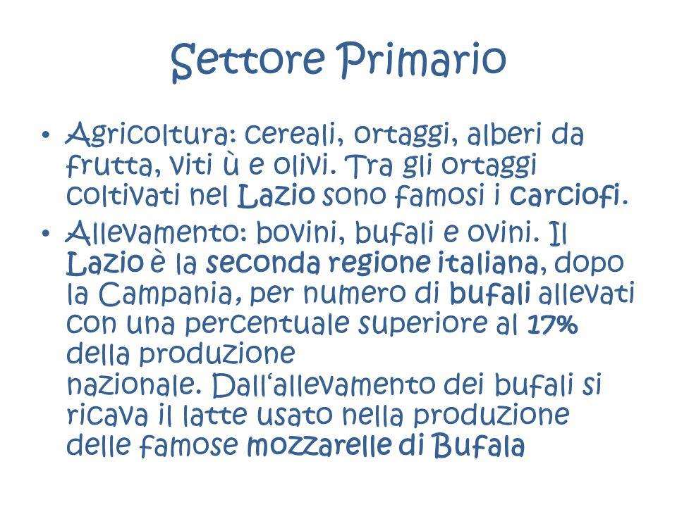 Settore Primario Agricoltura: cereali, ortaggi, alberi da frutta, viti ù e olivi. Tra gli ortaggi coltivati nel Lazio sono famosi i carciofi. Allevame