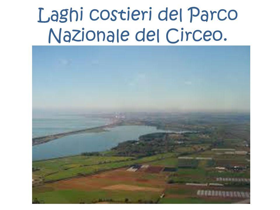 Laghi costieri del Parco Nazionale del Circeo.
