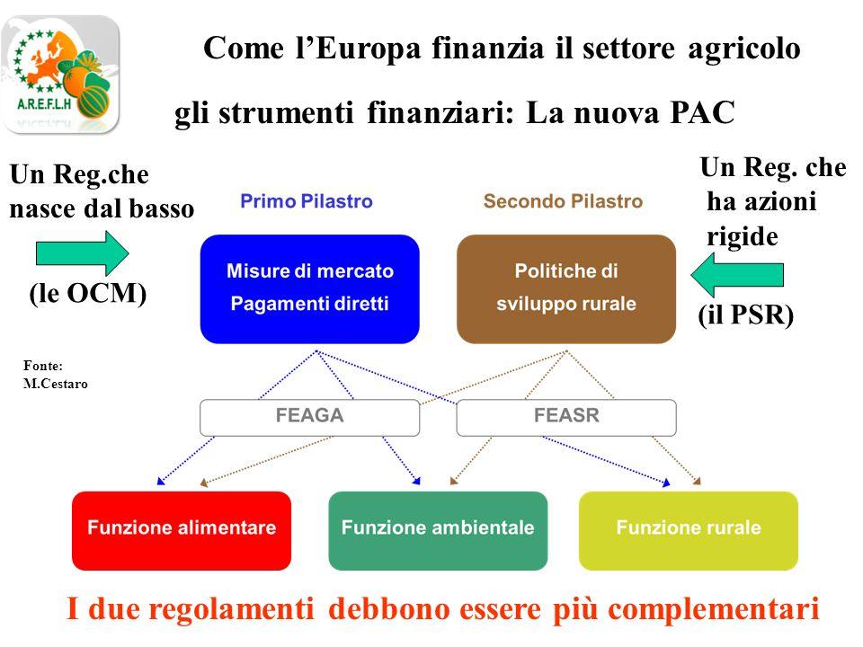 gli strumenti finanziari: La nuova PAC Come l'Europa finanzia il settore agricolo Fonte: M.Cestaro Un Reg.che nasce dal basso Un Reg.