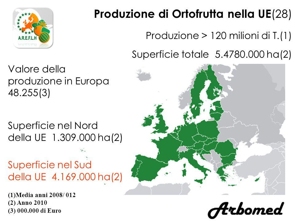 Produzione di Ortofrutta nella UE (28) Produzione > 120 milioni di T.(1) Superficie totale 5.4780.000 ha(2) (1)Media anni 2008/ 012 (2) Anno 2010 (3) 000.000 di Euro Valore della produzione in Europa 48.255(3) Superficie nel Sud della UE 4.169.000 ha(2) Superficie nel Nord della UE 1.309.000 ha(2)