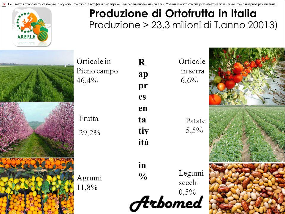 Produzione di Ortofrutta in Italia Produzione > 23,3 milioni di T.anno 20013) Orticole in Pieno campo 46,4% Frutta 29,2% Agrumi 11,8% Orticole in serra 6,6% Patate 5,5% Legumi secchi 0,5% R ap pr es en ta tiv ità in %