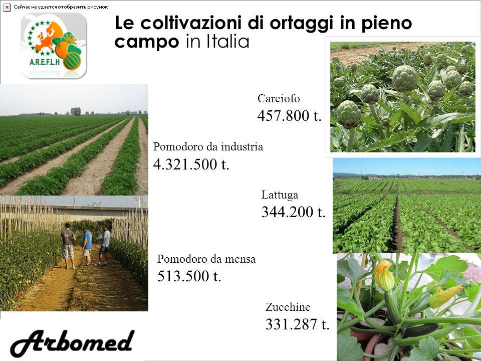Le coltivazioni di ortaggi in pieno campo in Italia Pomodoro da industria 4.321.500 t.