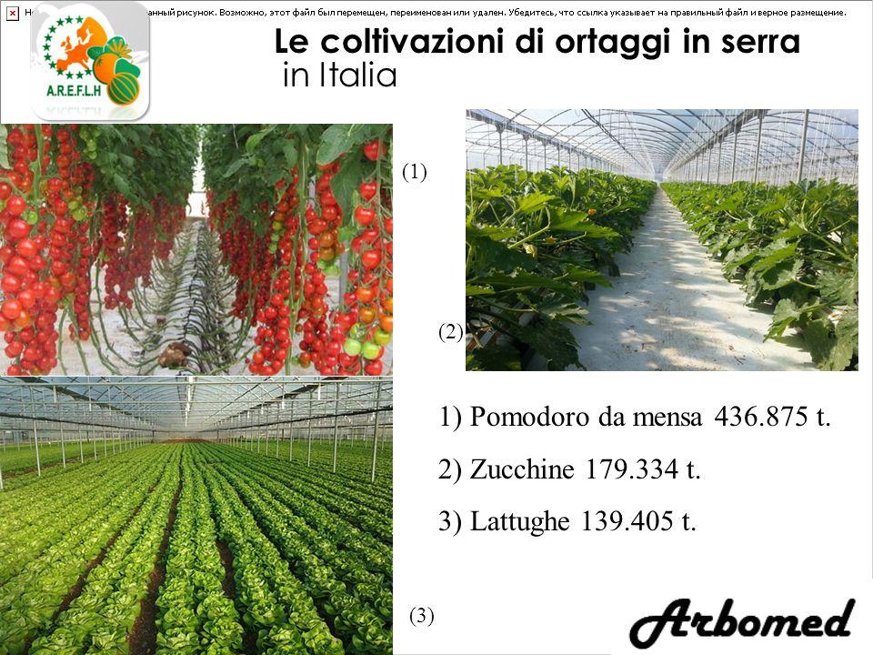 Le coltivazioni di ortaggi in serra in Italia (3) (1) (2) 1) Pomodoro da mensa 436.875 t.