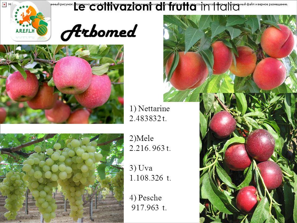Le coltivazioni di frutta in Italia 1) Nettarine 2.483832 t.