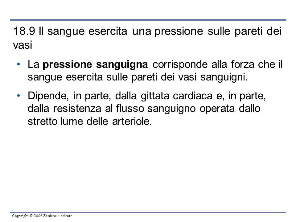 Copyright © 2006 Zanichelli editore 18.9 Il sangue esercita una pressione sulle pareti dei vasi La pressione sanguigna corrisponde alla forza che il s
