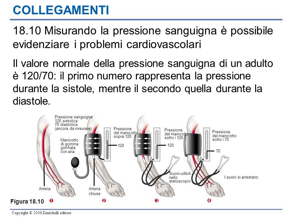 Copyright © 2006 Zanichelli editore Pressione sanguigna 120 sistolica 70 diastolica (ancora da misurare) Manicotto di gomma gonfiata con aria Arteria