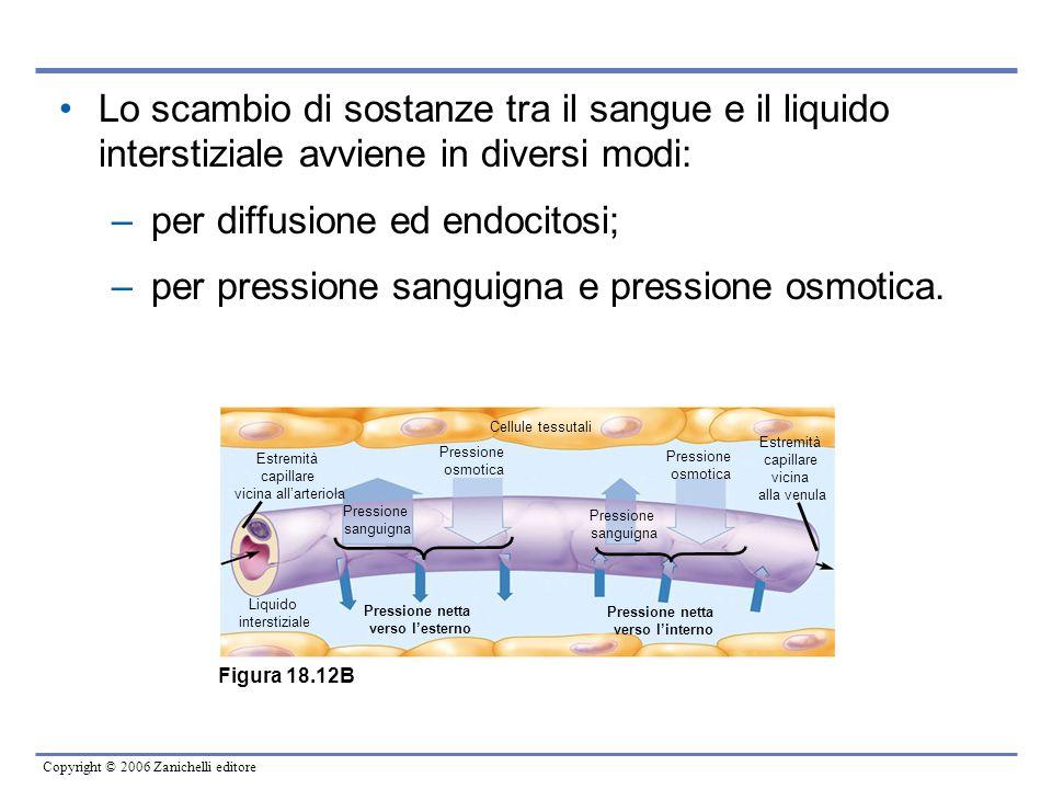Copyright © 2006 Zanichelli editore Lo scambio di sostanze tra il sangue e il liquido interstiziale avviene in diversi modi: –per diffusione ed endoci