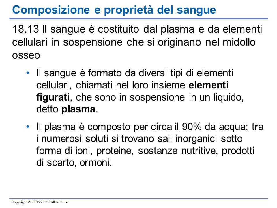 Copyright © 2006 Zanichelli editore Composizione e proprietà del sangue 18.13 Il sangue è costituito dal plasma e da elementi cellulari in sospensione