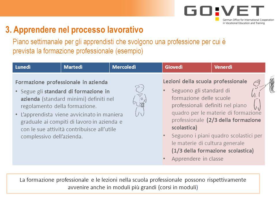 3. Apprendere nel processo lavorativo Formazione professionale in azienda Segue gli standard di formazione in azienda (standard minimi) definiti nel r