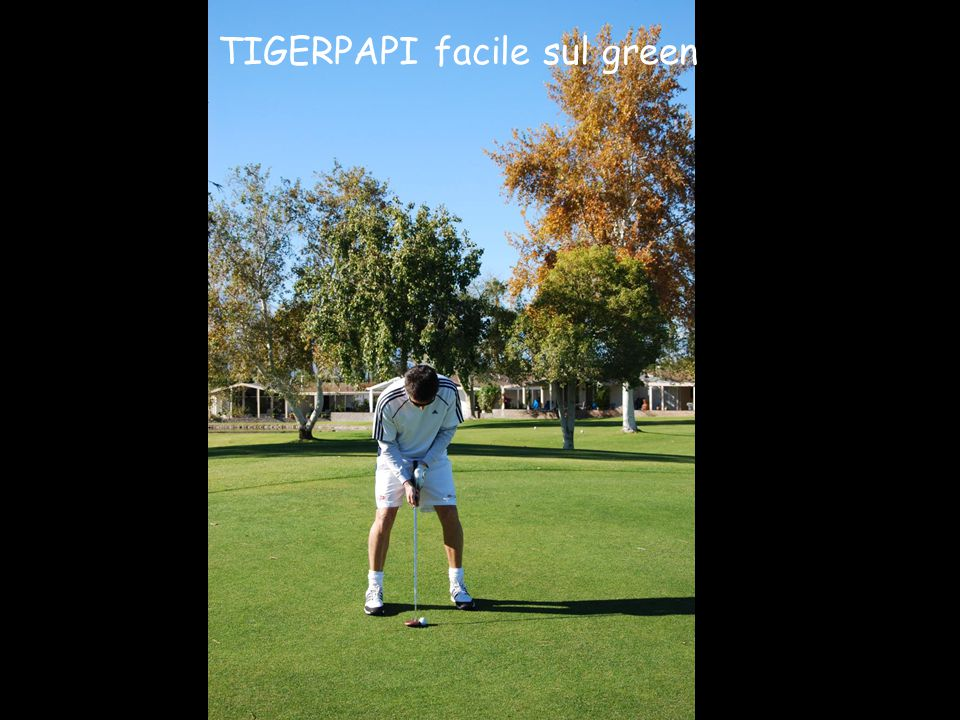 TIGERPAPI facile sul green