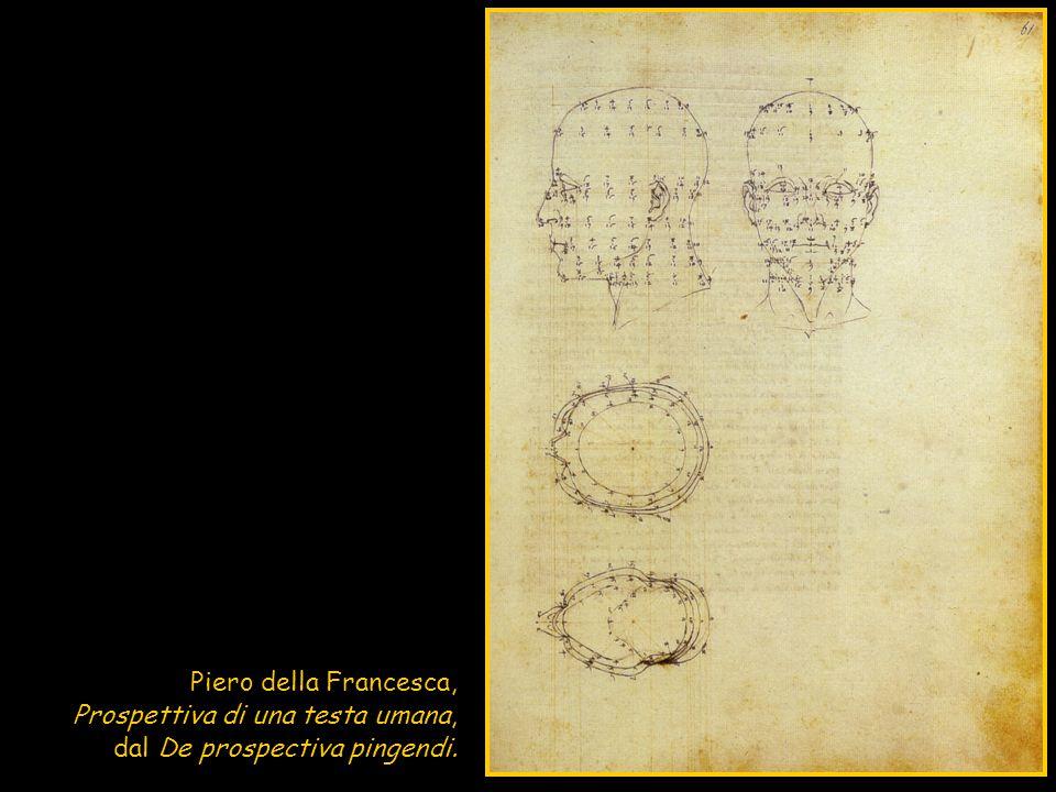 Piero della Francesca, Prospettiva di una testa umana, dal De prospectiva pingendi.