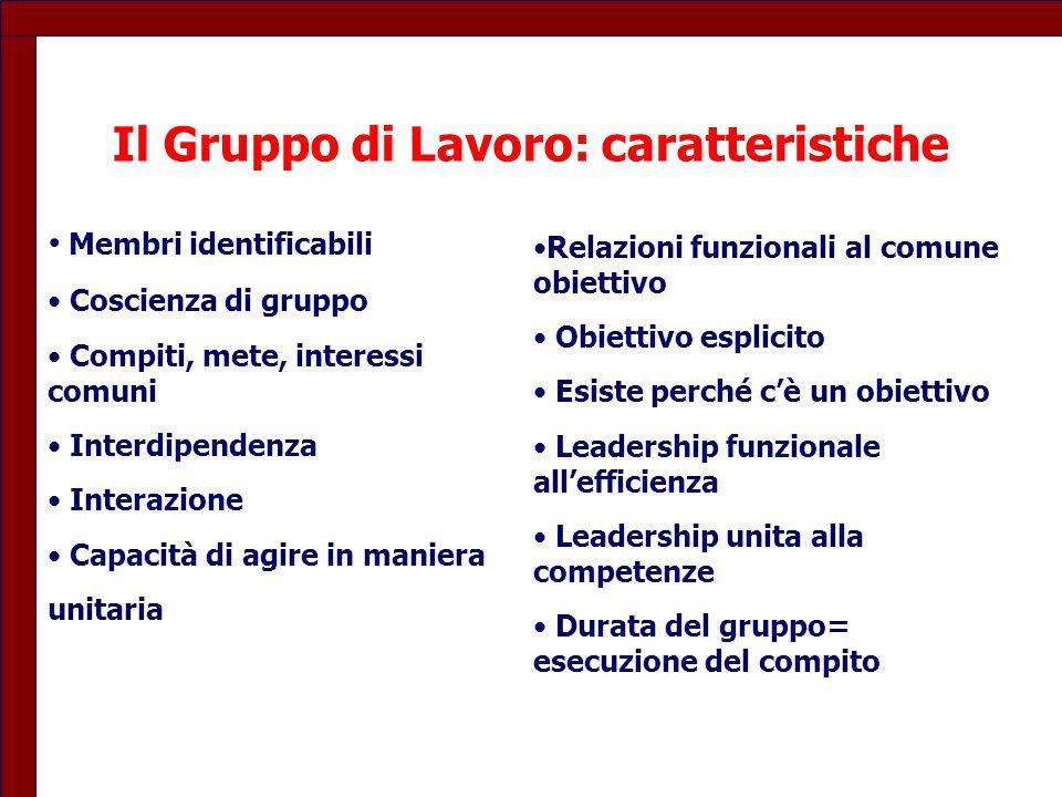 Il Gruppo di Lavoro: caratteristiche Membri identificabili Coscienza di gruppo Compiti, mete, interessi comuni Interdipendenza Interazione Capacità di