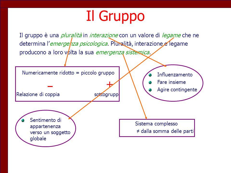 Il Gruppo Il gruppo è una pluralità in interazione con un valore di legame che ne determina l'emergenza psicologica. Pluralità, interazione e legame p