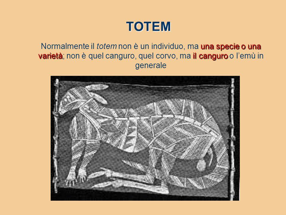 una specie o una varietàil canguro Normalmente il totem non è un individuo, ma una specie o una varietà; non è quel canguro, quel corvo, ma il canguro