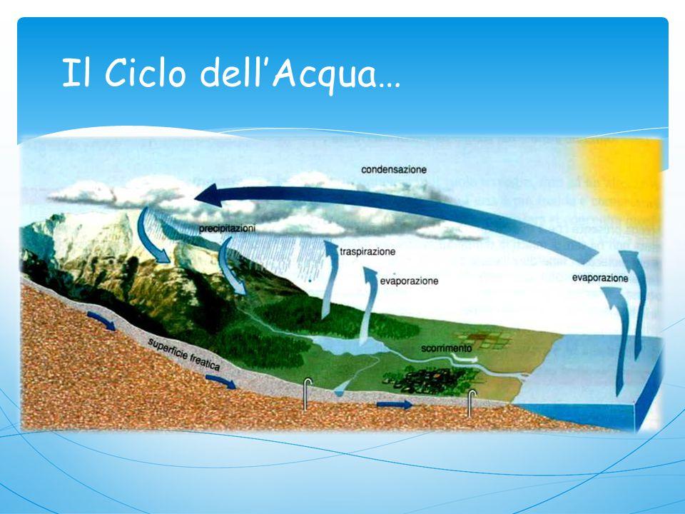 L'acqua è una risorsa naturale ritenuta, fino a pochi anni fa, inesauribile. In effetti, le quantità d'acqua presente sulla Terra è immensa. 97,5% 2,5