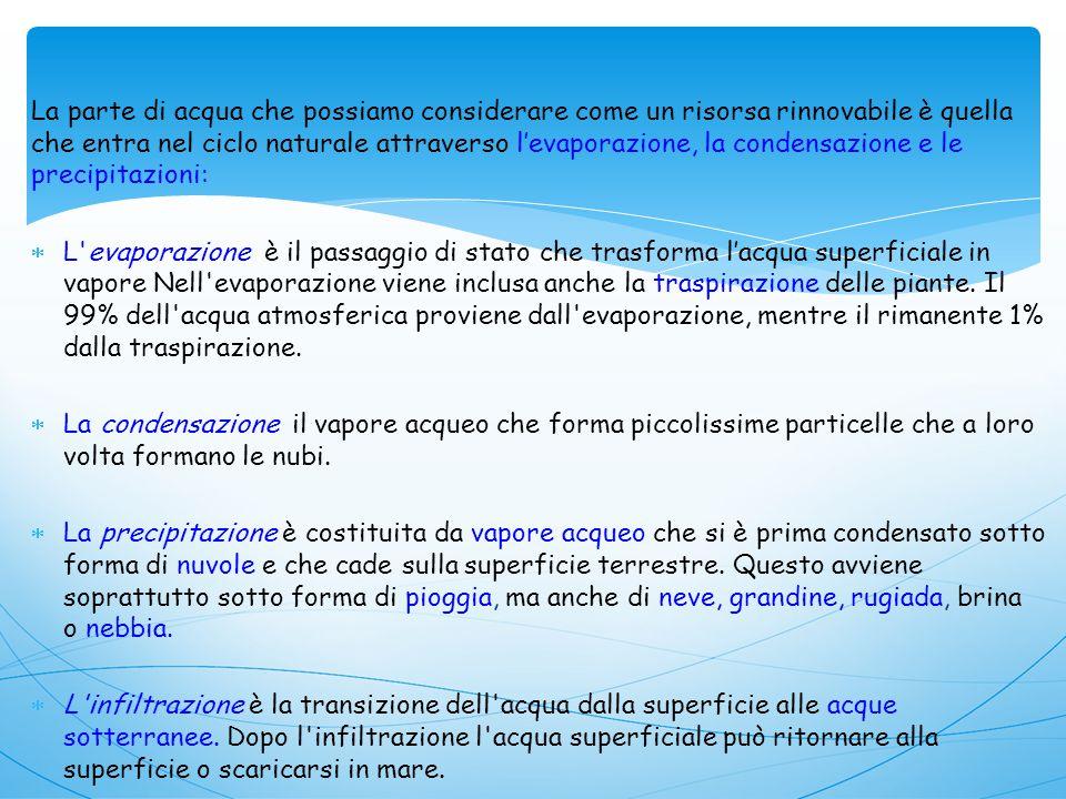 Alcuni effetti negativi dell eutrofizzazione sono:  aumento della biomassa di fitoplancton  sviluppo di specie tossiche di fitoplancton  aumento della quantità di alghe gelatinose (mucillagini)  aumento delle piante acquatiche in prossimità dei litorali  aumento della torbidità e del cattivo odore dell acqua  diminuzione della quantità di ossigeno disciolto nell acqua  diminuzione della diversità biotica Per contrastare l eutrofizzazione sono necessari la riduzione dei fertilizzanti in agricoltura, depurazione degli scarichi civili ed industriali, trattamento delle acque di scolo delle colture tramite agenti sequestranti ed impianti di fitodepurazione.