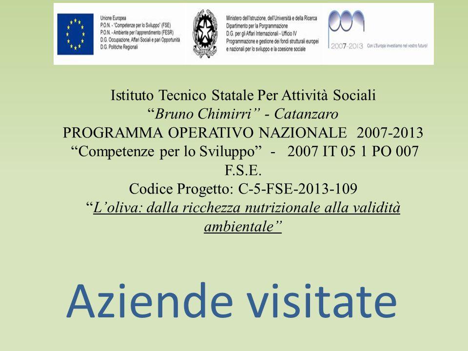 Istituto Tecnico Statale Per Attività Sociali Bruno Chimirri - Catanzaro PROGRAMMA OPERATIVO NAZIONALE 2007-2013 Competenze per lo Sviluppo - 2007 IT 05 1 PO 007 F.S.E.