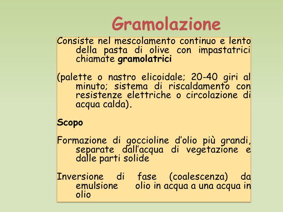 Gramolazione Consiste nel mescolamento continuo e lento della pasta di olive con impastatrici chiamate gramolatrici (palette o nastro elicoidale; 20-40 giri al minuto; sistema di riscaldamento con resistenze elettriche o circolazione di acqua calda).
