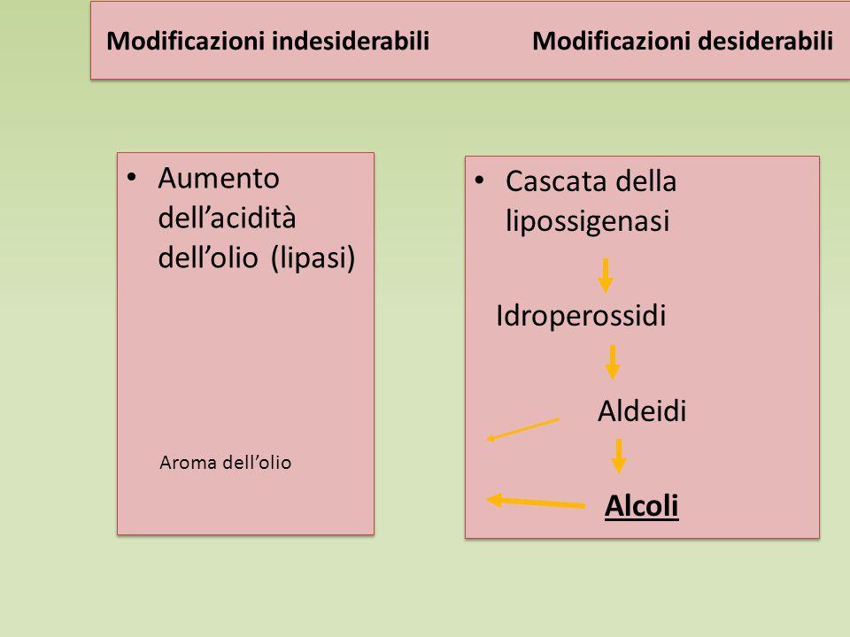 Modificazioni indesiderabili Modificazioni desiderabili Aumento dell'acidità dell'olio (lipasi) Cascata della lipossigenasi Idroperossidi Aldeidi Alcoli Cascata della lipossigenasi Idroperossidi Aldeidi Alcoli Aroma dell'olio