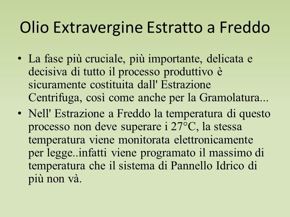 Olio Extravergine Estratto a Freddo La fase più cruciale, più importante, delicata e decisiva di tutto il processo produttivo è sicuramente costituita dall Estrazione Centrifuga, così come anche per la Gramolatura...