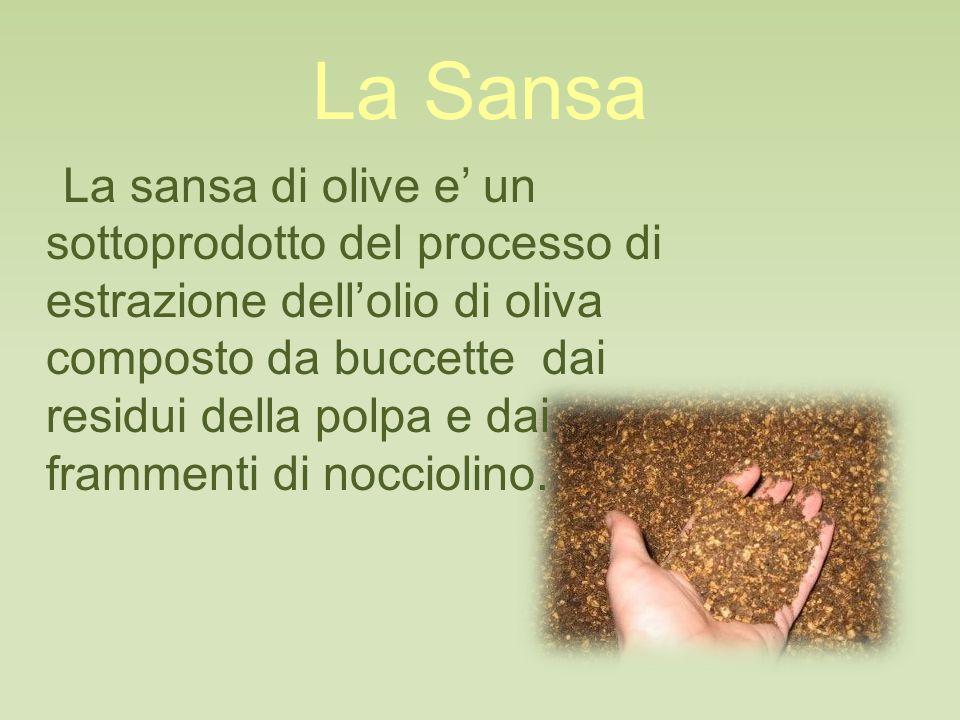 La Sansa La sansa di olive e' un sottoprodotto del processo di estrazione dell'olio di oliva composto da buccette dai residui della polpa e dai frammenti di nocciolino.