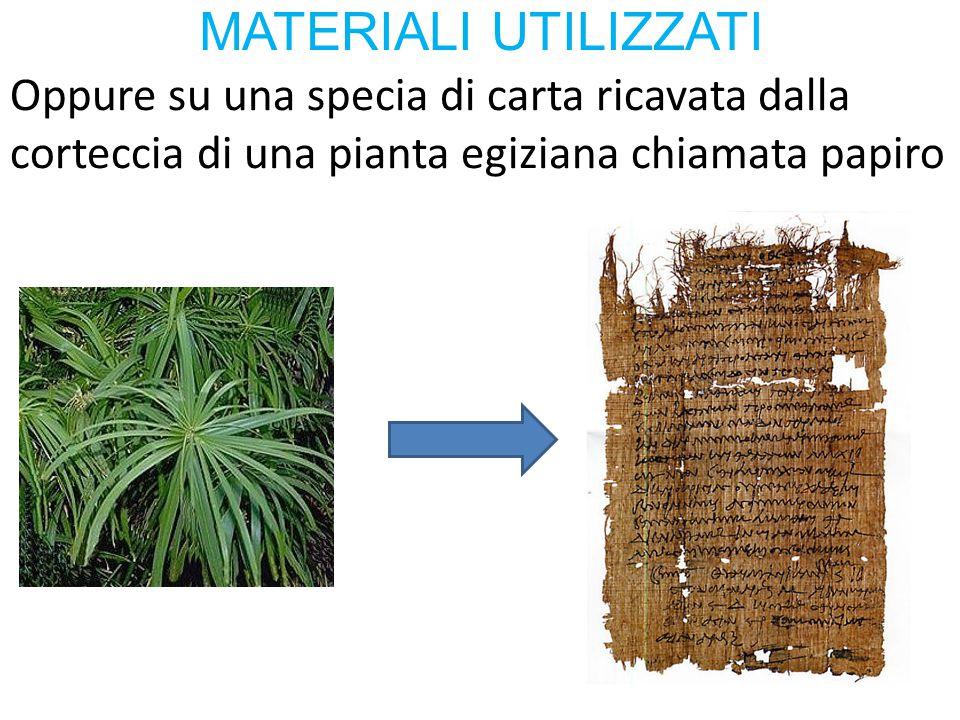 Oppure su una specia di carta ricavata dalla corteccia di una pianta egiziana chiamata papiro