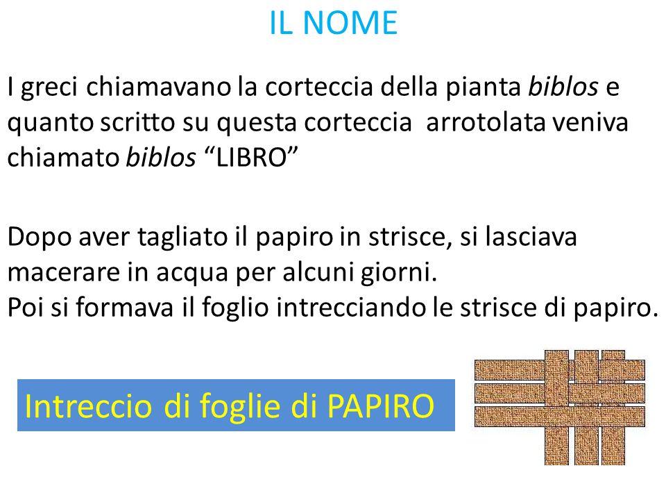 """IL NOME I greci chiamavano la corteccia della pianta biblos e quanto scritto su questa corteccia arrotolata veniva chiamato biblos """"LIBRO"""" Intreccio d"""