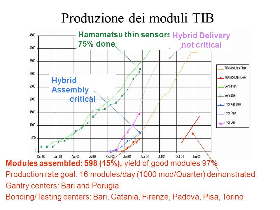 Costruzione moduli TIB-TOB-TEC