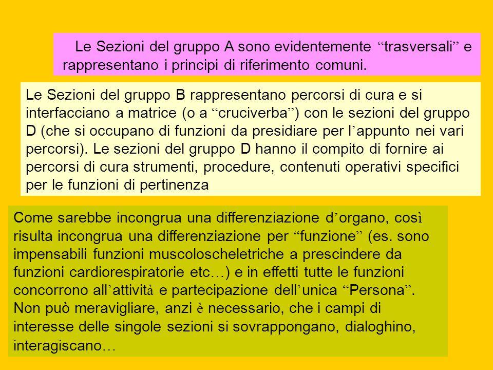 """ Le Sezioni del gruppo A sono evidentemente """" trasversali """" e rappresentano i principi di riferimento comuni. Le Sezioni del gruppo B rappresentano p"""