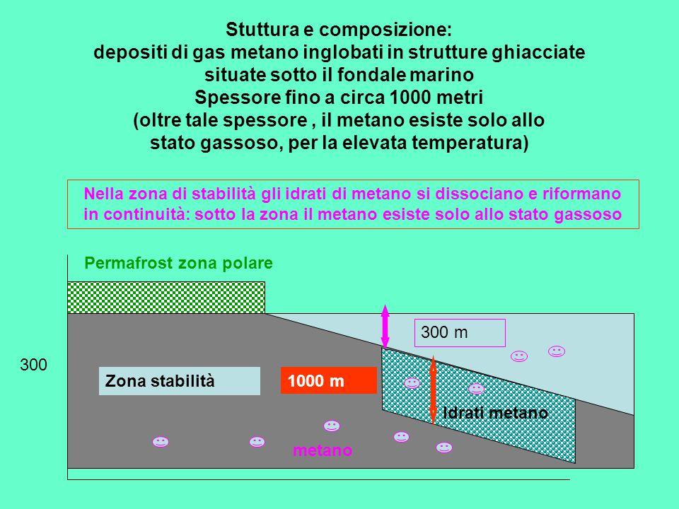 Permafrost zona polare 300 300 m 1000 m Idrati metano Zona stabilità Stuttura e composizione: depositi di gas metano inglobati in strutture ghiacciate situate sotto il fondale marino Spessore fino a circa 1000 metri (oltre tale spessore, il metano esiste solo allo stato gassoso, per la elevata temperatura) Nella zona di stabilità gli idrati di metano si dissociano e riformano in continuità: sotto la zona il metano esiste solo allo stato gassoso metano