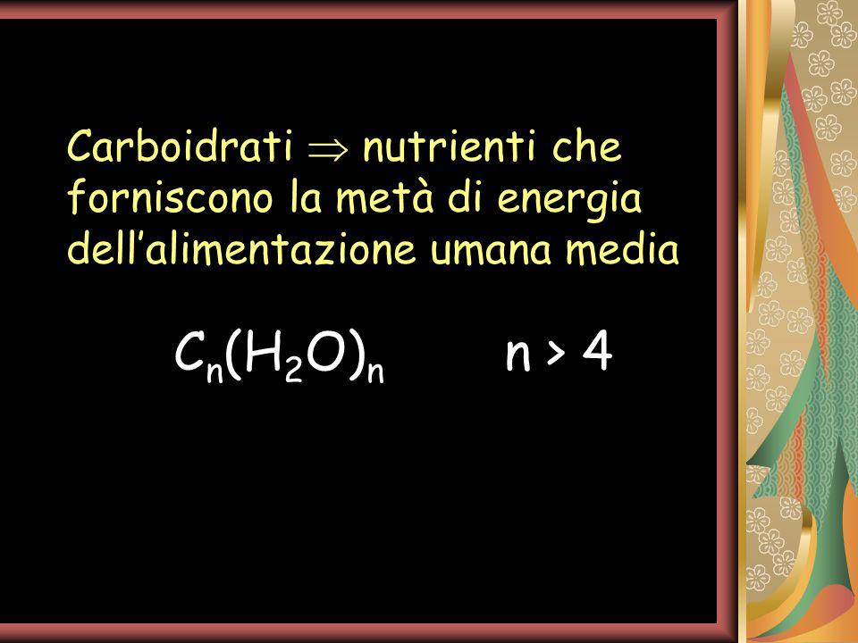 C n (H 2 O) n n > 4 Carboidrati  nutrienti che forniscono la metà di energia dell'alimentazione umana media