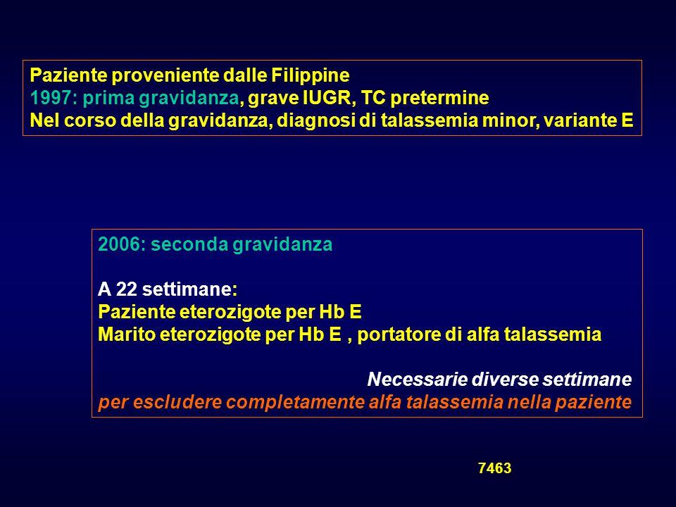 Il ginecologo - ecografista REPERTI ECOGRAFICI PATOLOGICI Registro Toscano Difetti Congeniti Cortona 2007