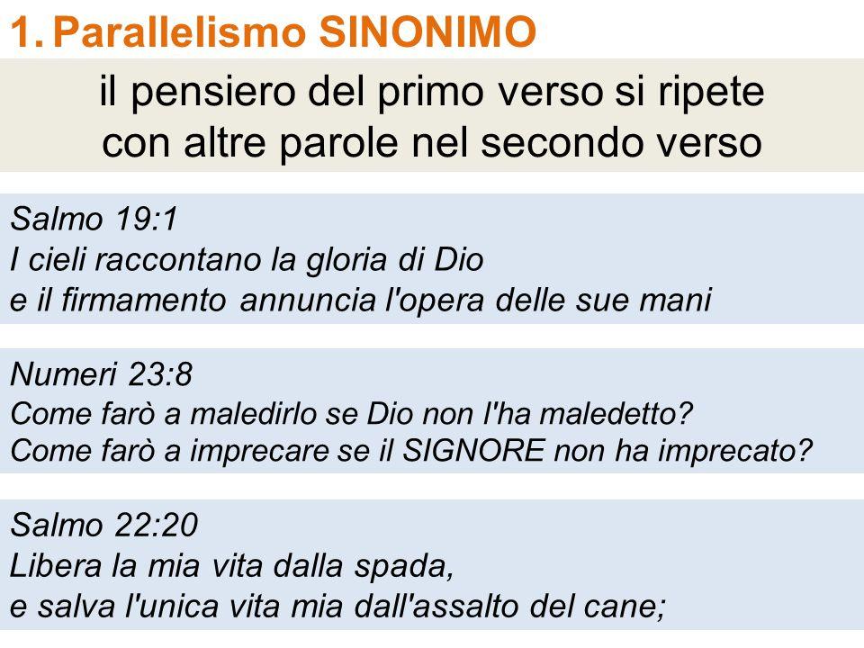 1.Parallelismo SINONIMO il pensiero del primo verso si ripete con altre parole nel secondo verso Salmo 19:1 I cieli raccontano la gloria di Dio e il f
