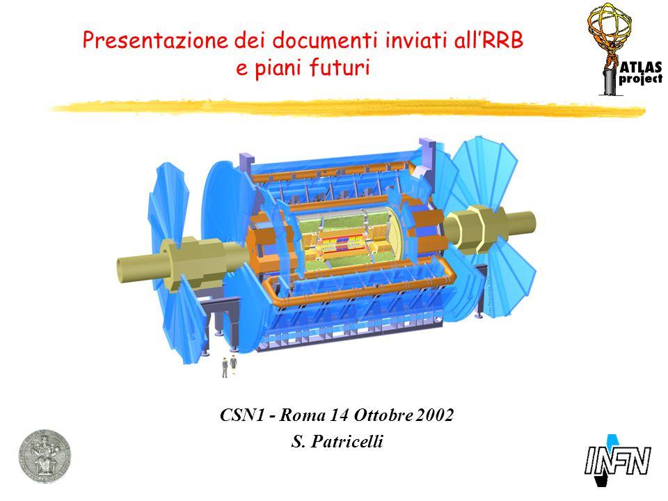 Presentazione dei documenti inviati all'RRB e piani futuri CSN1 - Roma 14 Ottobre 2002 S.